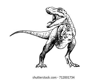 Graphical angry dinosaur isolated on white background .Vector illustration