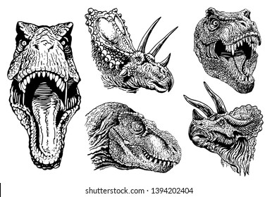 Graphical dinosaur portraits isolated , vector illustration