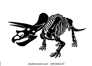 Graphical dinosaur skeleton isolated on white background,vector  triceratops