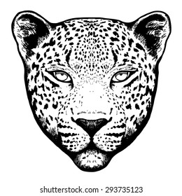 Graphical leopard