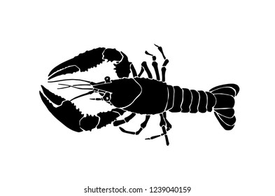 Graphical lobster isolated on white background,vector sketchy illustration, sea-food icon