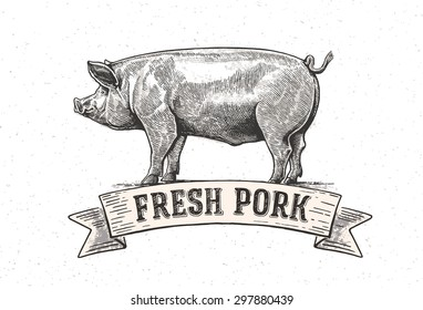 Graphical pig hand drawing illustration.