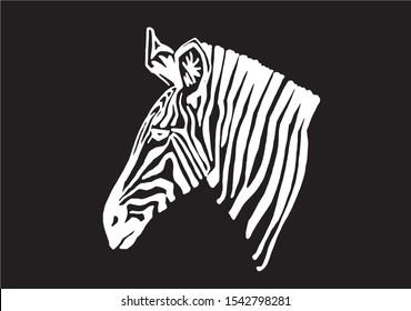 Graphical portrait of zebra isolated on black background,vector engraved illustration