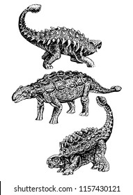 Graphical set of  ankylosaurus  isolated on white background,vector sketchy illustration