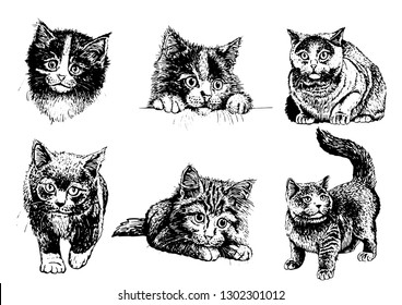 Graphical set of cats isolated on white background, vector sketch