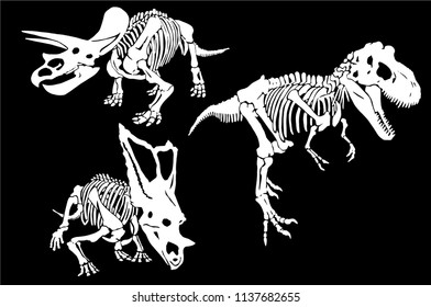 Graphical set  of dinosaur skeletons isolated on black background,vector triceratops