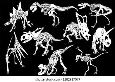 Graphical set of dinosaur skeletons isolated on black background,vector sketch