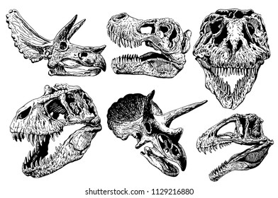 Graphical set of dinosaur skulls isolated on white background,vector sketchy illustration for tattoo and printing