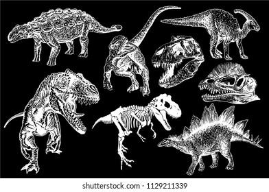 Graphical set of dinosaurs isolated on black background,vector tyrannosaurus, skeleton, skull, ankylosaurus,  parazaurolophus,stegosaurus