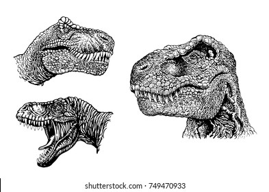 Graphical set of dinosaurs isolated on white background,vector illustration