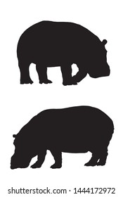 Graphical set of hippo  silhouettes isolated on white,vector illustration, symbol