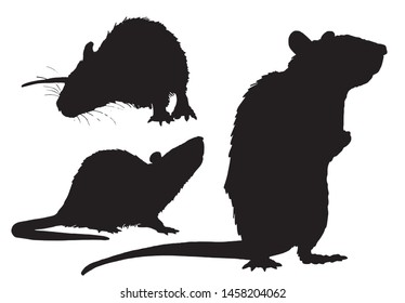 Graphical set of rat silhouettes isolated on white,vector illustration,rodent