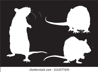 Graphical set of rat silhouettes isolated on black background,vector illustration