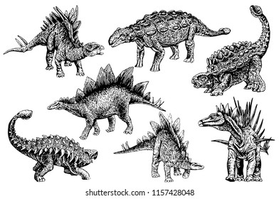Graphical set of stegosaurs and ankylosauruses  isolated on white background,vector sketchy illustration