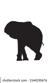 Graphical silhouette of elephant isolated on white background,vector illustration