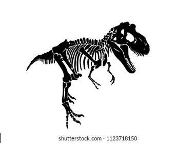 Graphical sketch of dinosaur skeleton isolated on white background,vector tyrannosaurus icon