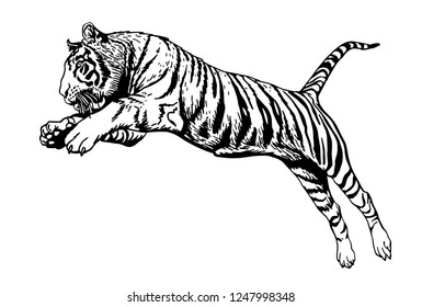 Graphical tiger jumping isolated on white background,vector sketch ,tattoo and logo illustration