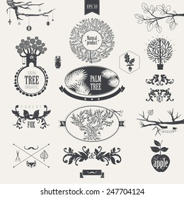 Graphical trees. Symbols of nature.