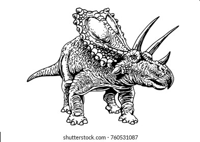 Graphical triceratops isolated on white  background,vector illustration for printing