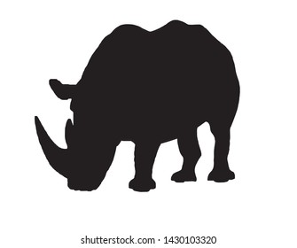 Graphical vector silhouette of rhino isolated on white,illustration