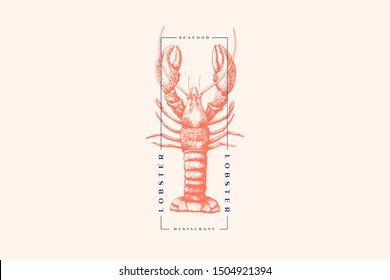 Graphically drawn lobster. Hand-drawn retro logo with sea animal in the style of engraving. Can be used for menu restaurants, fish markets and in stores. Vector vintage illustration.