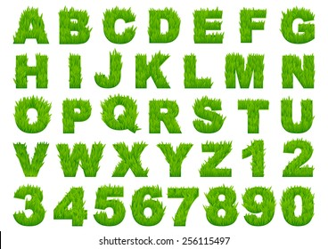 Grass alphabet depicting letters and numbers with spring green grass texture for education or ecological concept design