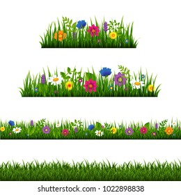 Grass Border With Flower Collection Isolated With Gradient Mesh, Vector Illustration