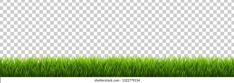 Grass Border Transparent background, Vector Illustration