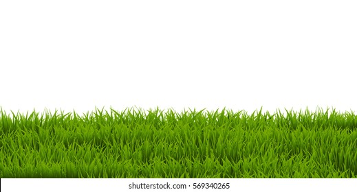 Grass Border, Vector Illustration