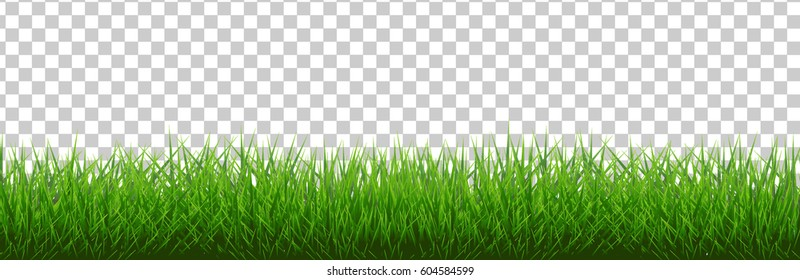 Grass Border , Vector Illustration