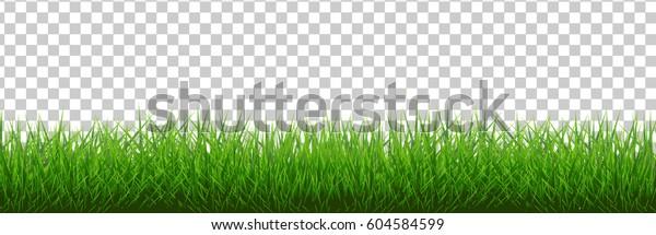 Граница травы, векторная иллюстрация