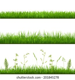 Grass Borders, With Gradient Mesh, Vector Illustration