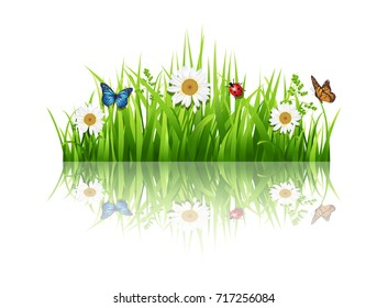 Grass with flowers background.Vector