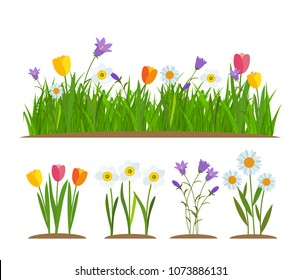 Grass and flowers border, greeting card decoration element White Background. Vector Illustration. EPS10