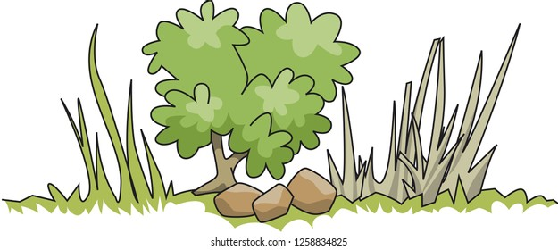 grass , foliage and plant and rocks in  nature vector illustration, beautiful green nature ground vector