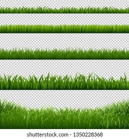 Grass Frame Borders Transparent Background, Vector Illustration
