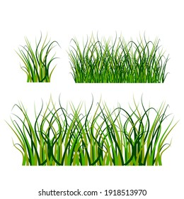 Grass, great design for any purposes. Seamless vector texture. White background. Stock image. EPS 10.