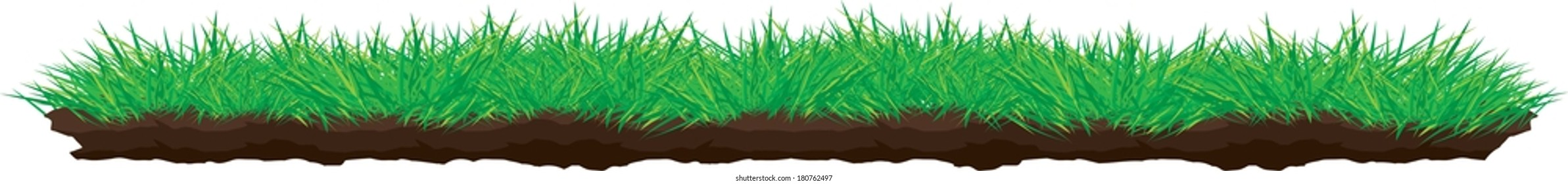 Grass Growing out of Dirt Turf Side View Vector