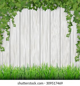Grass and hanging ivy on white vintage wooden planks background.