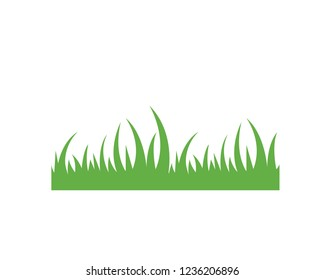 Grass ilustration vector template