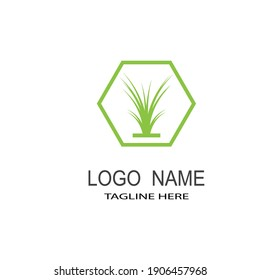 Grass leaves vector icon. Cartoon illustration of grass leaves vector