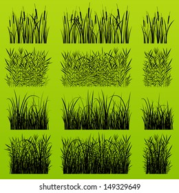 Grass, reed and wild plants detailed silhouettes illustration collection background vector