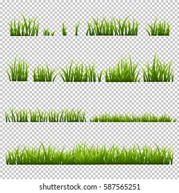 Grass Set, Isolated on Transparent Background, Vector Illustration