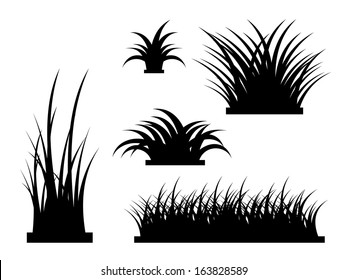 Grass Silhouette Presets - Realistic Vector Element Template