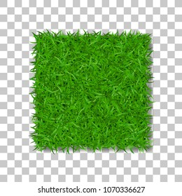Grass square 3D. Beautiful green grassy field, isolated on white transparent background. Lawn abstract nature texture. Symbol natural, fresh, meadow plant, spring or summer Vector illustration