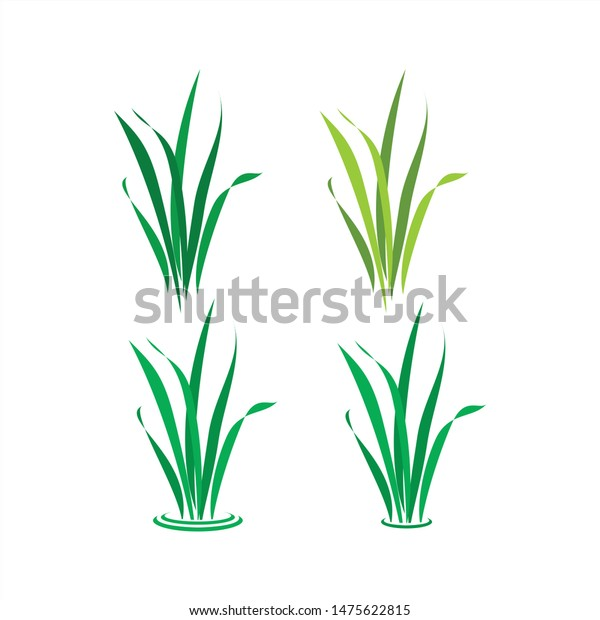 grass vector logo design template stock vector royalty free 1475622815 shutterstock