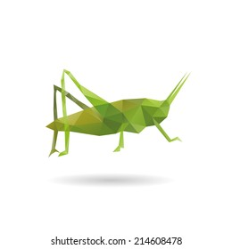 Grasshopper abstract isolated on a white backgrounds, vector illustration