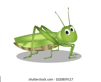 Grasshopper with Character Expressions Vector Image
