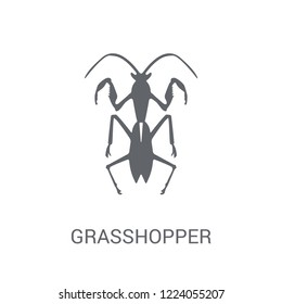 Grasshopper icon. Trendy Grasshopper logo concept on white background from animals collection. Suitable for use on web apps, mobile apps and print media.