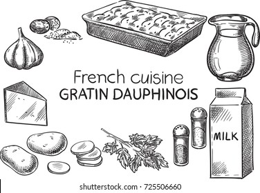 Gratin Dauphinois. Creative conceptual vector. Sketch hand drawn french food recipe illustration, engraving, ink, line art, vector.